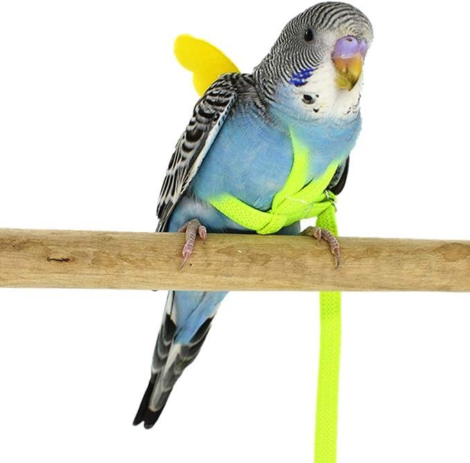 POPETPOP Loro Pájaro Arnés-Lindo arnés para pájaros Cuerdas ...