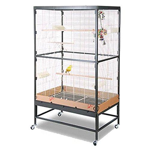 montana cages voliere zimmervoliere k fig paradiso 90 antik platinum online kaufen. Black Bedroom Furniture Sets. Home Design Ideas