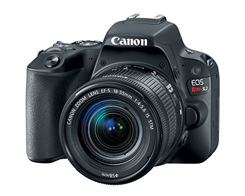 Canon EOS Rebel SL2 DSLR Camera with EF-S 18-55mm STM Lens - WiFi Enabled (Best Entry Level Dslr For Beginners)