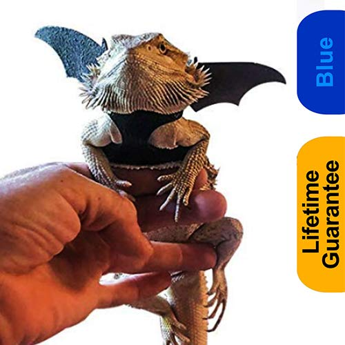 Halloween Costumes For Bearded Dragons (WATFOON Adjustable Bearded Dragon Lizard Comfort Leather Leash Harness with Cool Wings for Reptiles Amphibians Leopard Gecko Anole and Other Small Pet Animals (S,)