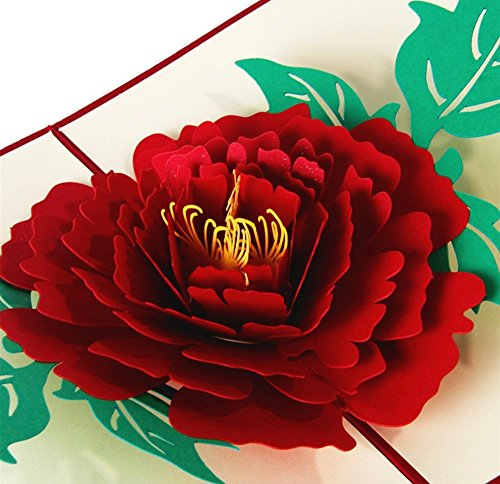 Peony Flower Blossom Pop up Card Nice 3D Greeting Card Thank You Card Birthday Card Mother's Day Invitation Card with Envelope Blank Card for All Occassion (Flat Peony Card)