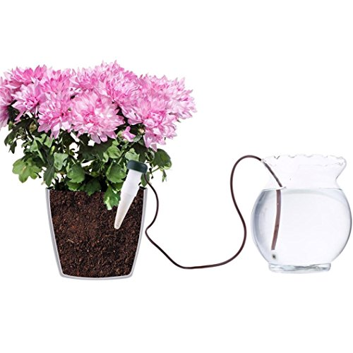 timed watering system indoor - 5