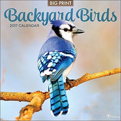 TF Publishing 2017 Backyard Birds Wall Calendar (17-1001)