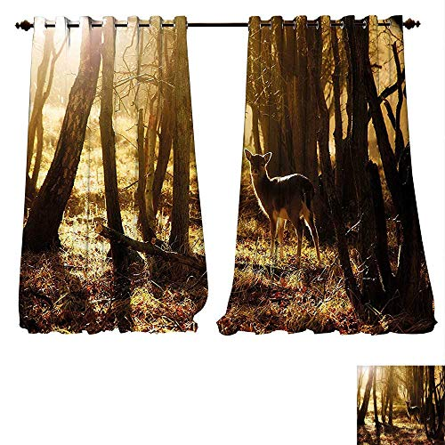 Blackout Curtain Panels Window Draperies Cabin Young Deer at Sunset in the Forest National Park Outdoors Netherlands Photo Yellow Brown Waterproof Window Curtain (W120 x L84 -Inch 2 Panels)