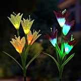 Outdoor Solar Garden Stake Lights - 2 Pack Solar Powered Lights with 8 Lily Flower, Multi-Color Changing LED Solar Stake Lights for Garden, Patio, Backyard