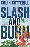Slash and Burn: A Dr Siri Murder Mystery