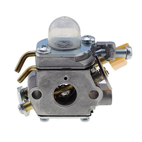 HIPA 309368003 309368001 Carburetor with Gasket Primer ...