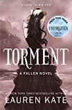 Front cover for the book Torment by Lauren Kate