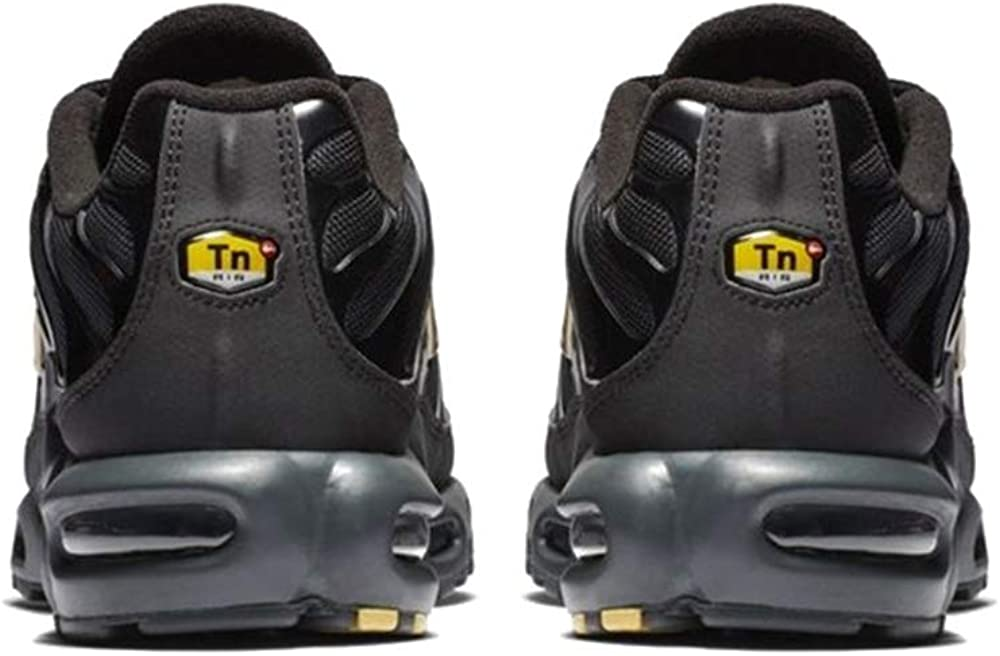 Nike Air Max Plus Tn Mens Running Trainers Bq3169 Sneakers Shoes