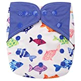 HappyEndings Contoured'Day or Night' AI2 All in Two Cloth Diaper/Snap-in Insert'One Fish, Two Fish'