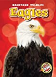 Eagles, Kari Schuetz, 1600147216