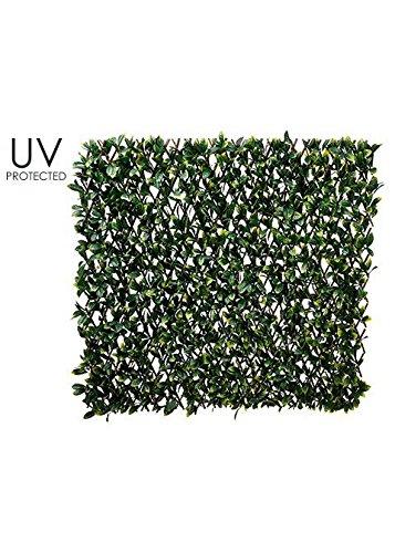 UV保護されたアウトドアLaurel Leafトレリスフェンスinダークグリーン – 78.5
