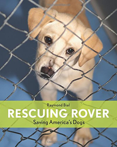 Download Rescuing Rover: Saving America's Dogs ebook