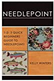 Needlepoint: 1-2-3 Quick Beginner's Guide to Needlepoint!