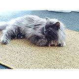 Premium Kratzmatte - Nuss, 40x60cm ✓ 100% robuster Sisal ✓ Rutschhemmend ✓ Antistatisch | Katzen-Teppich, Katzen-Matte zum Wetzen der Krallen | Kratzteppich, Katzenkratzmatte geeignet für Fußbodenheizung | Sisalmatte, Sisalteppich für Wand & Boden