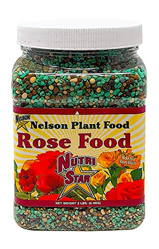 Nelson Plant Food Rose Food for All Types of Roses Climbing Tea Knock Outs Grandiflora with Five Sources of Nitrogen Nutri Star 18-14-10 (2 LB) (Best Type Of Rose)