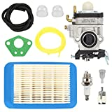 Hilom WYK-192 Carburetor with Air Filter Tune Up Kit for ECHO PB651H PB651T PB751H PB751T PB755H PB755T PB755SH PB755ST Shindaiwa EB633RT Power Blower A021000811