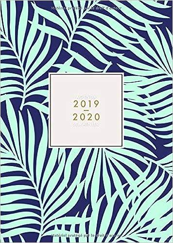 Amazon.com: Agenda 2019 2020 Semainier: Agenda 18 mois ...