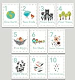 numbers art print - Our Earth Counting Wall Cards in English, Number Flash Cards, Set of Ten 5x7 Wall Art Prints, Nursery Wall Art Decor, Kid's Art Decor, Gender Neutral Nursery, Nature Themed, Woodland Nursery, Playroom