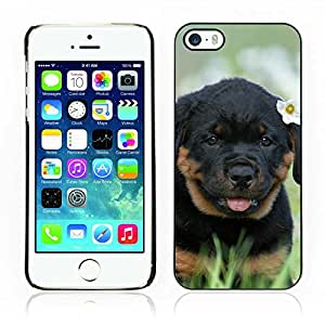 Carcasa Funda Case // V0000804 Dog Puppy Pattern // Apple Iphone 5 5S