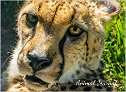 Animal Journal: Cheetah Inspired Creative Journal for Kids (All Ages) Doodle, Draw, Home Schooling, Landscape View (8.25 x 6), Unlined, 100 Pages: Volume 1 (Creativity Journal)