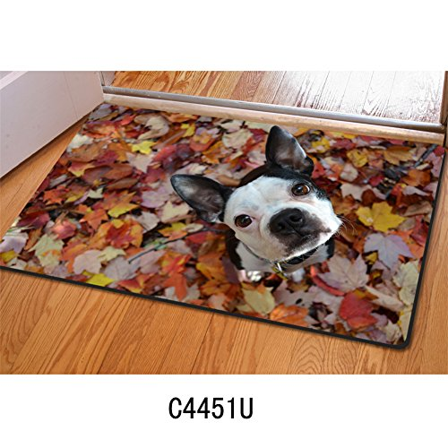 Instantarts Children Kid Bedroom Bathroom Mats 40x60cm Boston Terrier Breed Standard - Breed Terrier Standard Boston