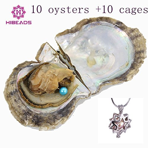 Africanbeads Wholesale 10 Pieces 6-7mm Round Akoya Cultured Oysters Mix 27 Different Dyed Colors Pearls +10 Pieces Cages With Chain 100 Different Designs Mix - Akoya Pearls Wholesale