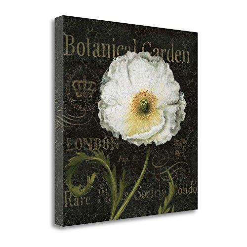 """Botanical Garden II"" By Daphne Brissonnet, Fine Art Giclee"