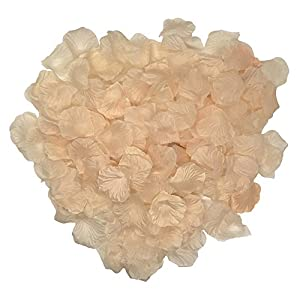 Grace Florist 2000 Pcs Silk Rose Petals Wedding Flower Decoration for Hotel Party Aisle Decor (Champagne) 120