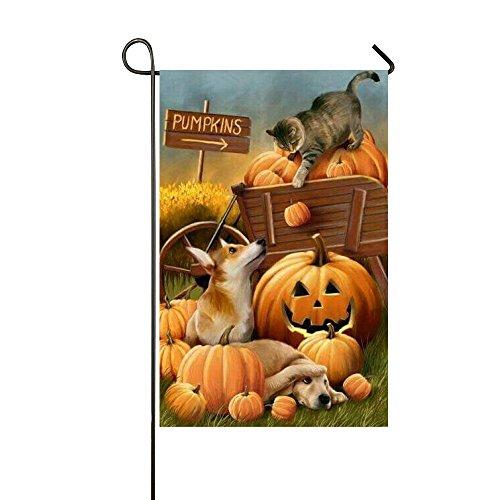 Rossne G sun Halloween Holiday Cat Garb Pumpkin Cute Dogs Garden Flag House Flag Decoration Double Sided Flag 12.5