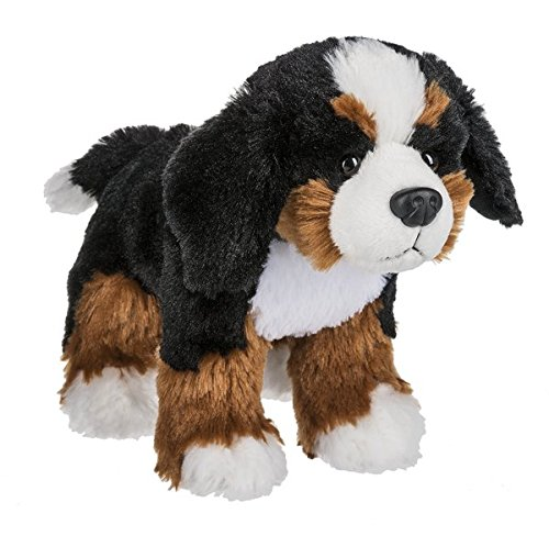 (Webkinz Bernese Mountain Dog)