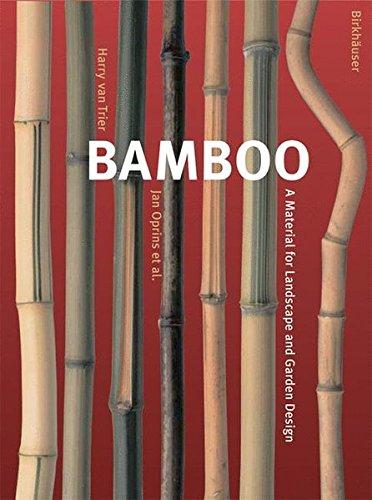 Cheap  Bamboo