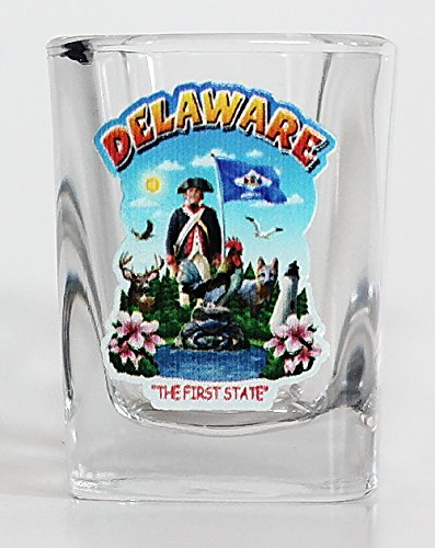 (Delaware State Montage Square Shot Glass)