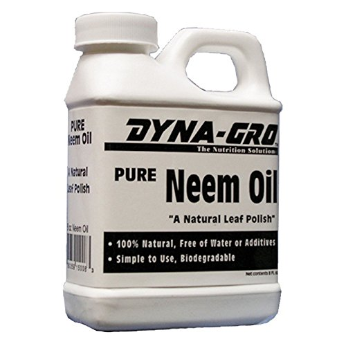 Dyna-Gro NEM-008 Pure Neem Oil Natural Leaf Polish, 8 oz by Dyna-Gro