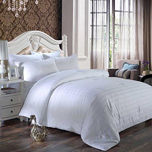 Comforters Fiberfill (Qucover All Season Jacquard Down Alternative Comforter Plush Fiberfill Duvet Insert For Boys Girls Children Bed Twin)