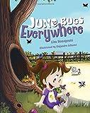 June Bugs Everywhere