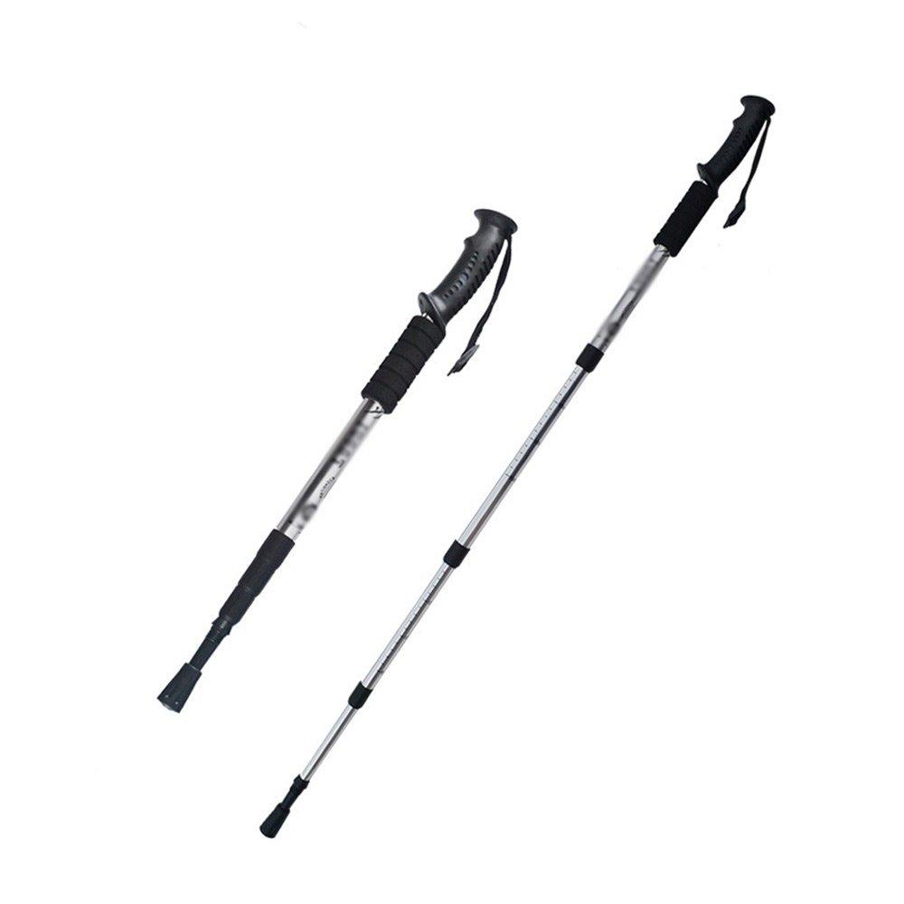人気定番の xhhwzb 2pcs/ロットNordic Walking Poles Telescopic 2pcs/ロットNordic Alpenstockアルミニウム合金Nordic Shooting Walking Walking xhhwzb Stick Crutch B07F71XPTS シルバー, あなたの街のお花屋さんイングの森:f6bedae4 --- a0267596.xsph.ru