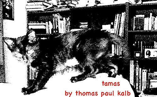 Tamas: A story about a cat who likes to watch Wheel of Fortune and Jeopardy! And is a fascist. (9 Cat Stories)