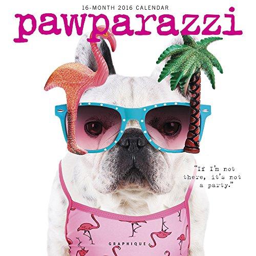 Graphique Pawparazzi 2016 Wall Calendar (CY97416)