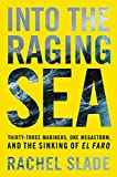 #7: Into the Raging Sea: Thirty-Three Mariners, One Megastorm, and the Sinking of El Faro
