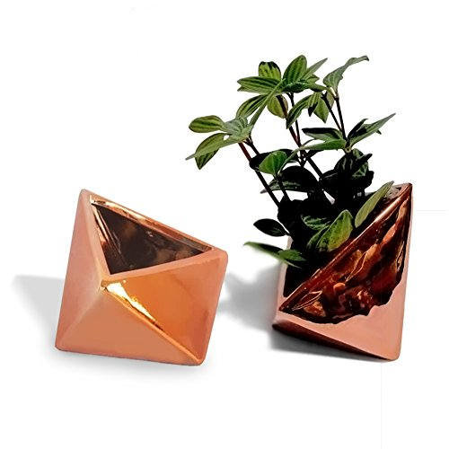 GSC ❤️ Copper Geometric Succulent Planter,Ceramic Metallic Cactus Planter Home Decor Air Plant Pot/Window Box,Set of 2-3 Inch by GSC