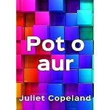 Pot o aur (Welsh Edition)