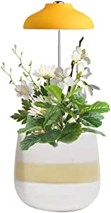 GrowLED LED Umbrella Plant Grow Light, Herb Garden, Height Adjustable, Automatic Timer, 5V Low Safe Voltage, Ideal for Plant Grow Novice Or Enthusiasts, Various Plants, DIY Decoration, Mellow Yellow