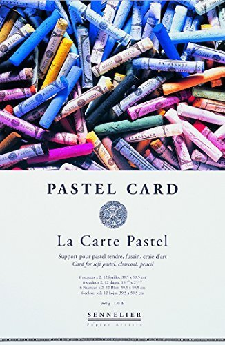 Sennelier Le Carte Pastel Pad 24cm x 16cm - Includes 2 x 001, 002, 003, 010, 012, 014 Sheets by Sennelier