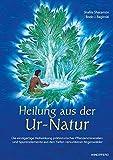 Heilung aus der Ur-Natur: die einzigartige Heilwirkung prähistorischer Pflanzenmineralien und Spurenelemente aus den Tiefen versunkener Regenwälder