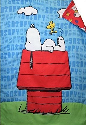 de05e5d8d169a9 Amazon.com  Peanuts Snoopy On The House (COMFORTER ONLY) Size ...