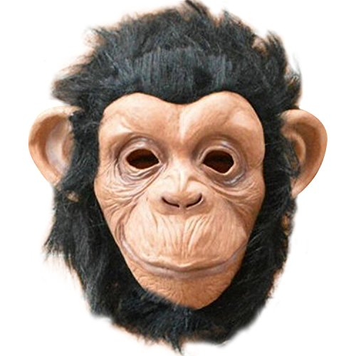 HighF (Monkeys Costumes)