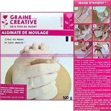 Polvo de moldeo de alginato, ideal para huellas corporales y alimentarias, 500 g: Amazon.es: Hogar