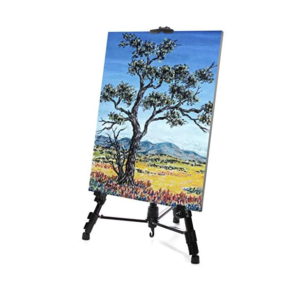 VViViD-Black-Aluminum-60-Inch-Tall-Adjustable-Light-Weight-Portable-Display-Easel-wBlack-Nylon-Carrying-Case