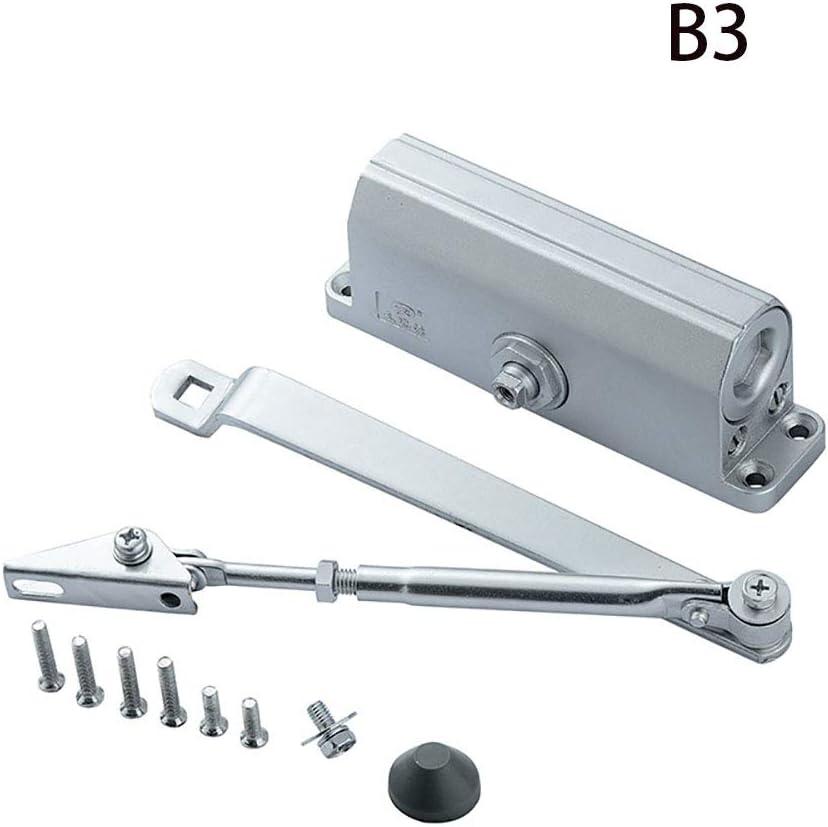 CHUANG TIANG Cierre de Puerta automático, Cierre de Puerta hidráulico Ajustable, aleación de Aluminio, Cierre de Puerta cortafuego hidráulico 45-65KG,B3